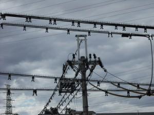電線・電柱を対策